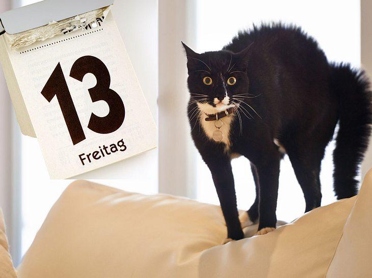 Freitag den 13. und schwarze Katzen bringen viele mit drohendem Unglück in Verbindung.