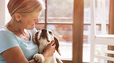 Ältere Tiere – Darauf sollten Sie bei Ihren Haustieren achten  - Foto: iStock // Halfpoint