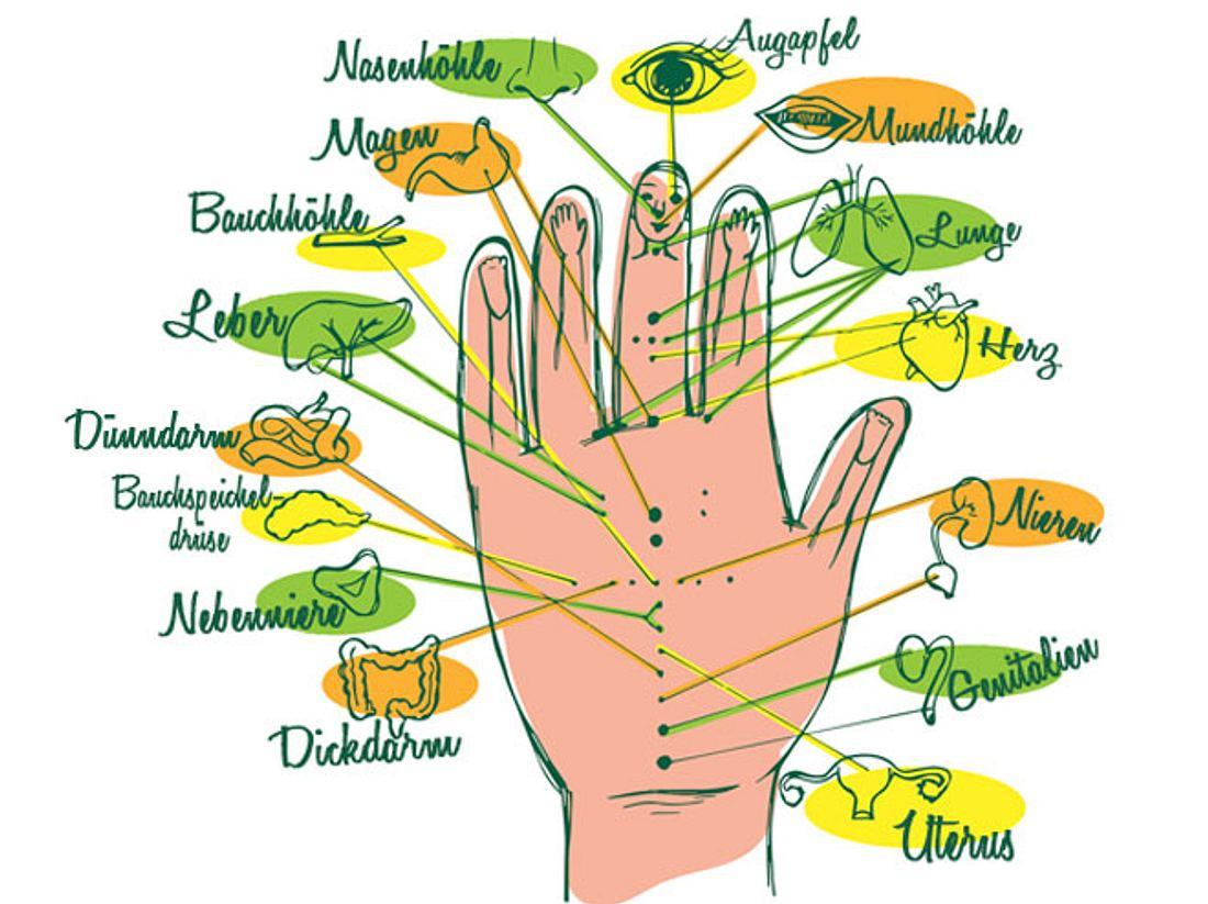 Akupressurpunkte der Handreflexzonen: Schmerzen leicht wegmassieren