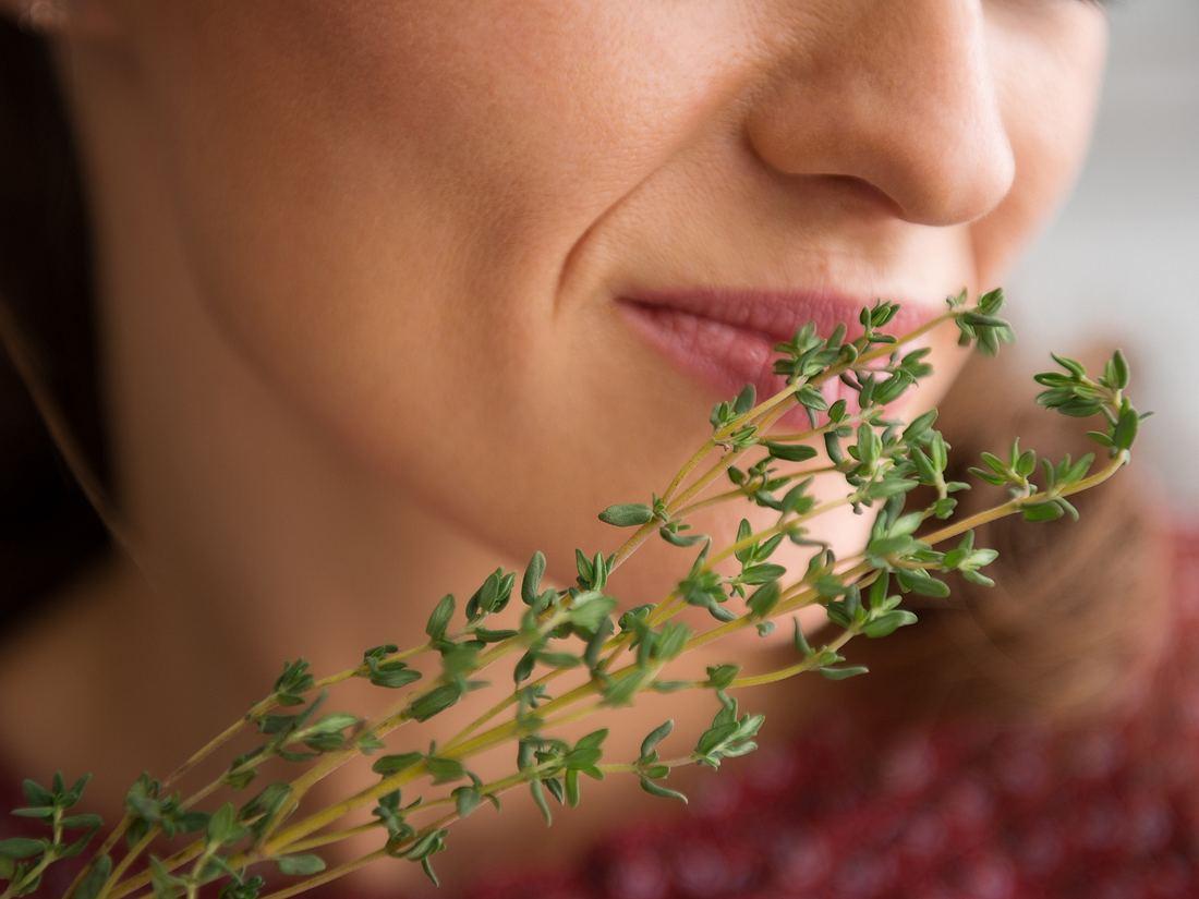 Anosmie ist der medizinische Fachbegriff für den Verlust des Geruchssinns.