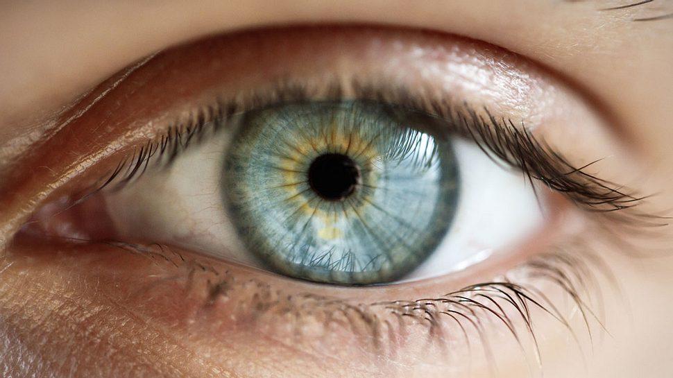 Das Auge einer, die blaue Augen hat.