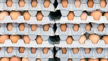 Belastete Eier: Was bedeutet das für mich? - Foto: minemero / iStock