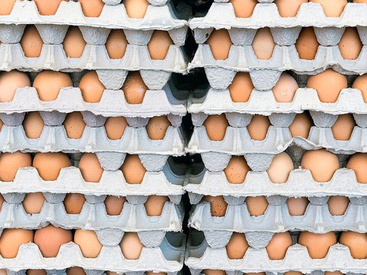Belastete Eier: Was bedeutet das für mich?
