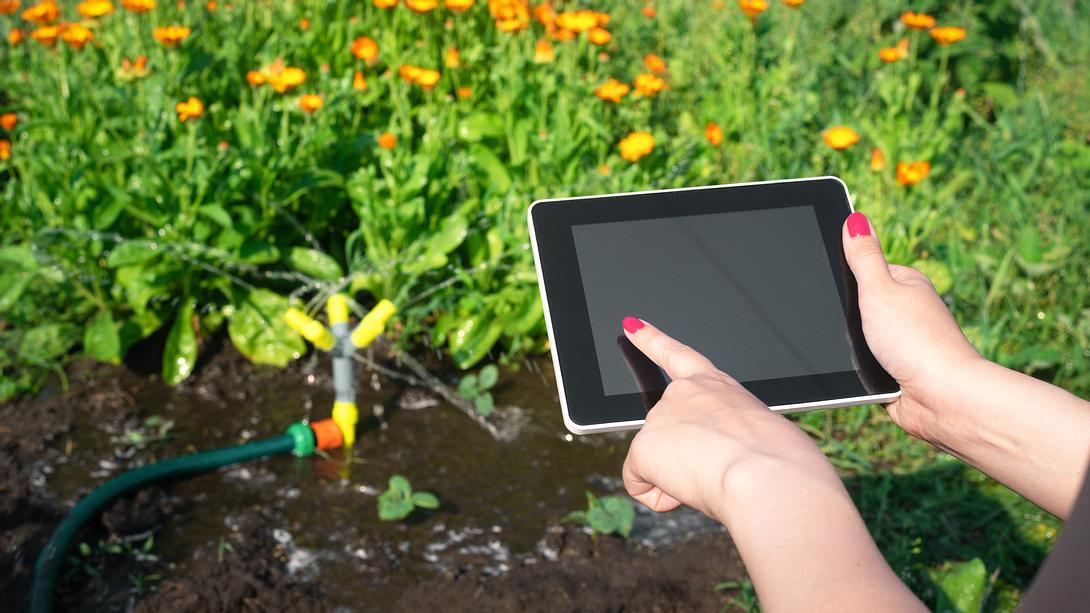 Bewässerungscomputer im Garten mit Schlauch - Foto: iStock/HappyNati