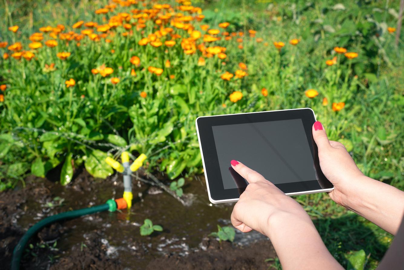 Bewässerungscomputer im Garten mit Schlauch