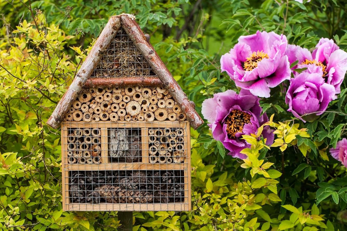 Bienenhotel bauen für Garten und Balkon