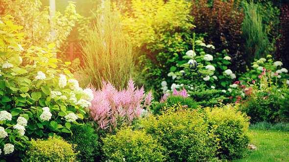 Garten mit Bio-Dünger gedüngt - Foto: iStock/Mkovalevskaya