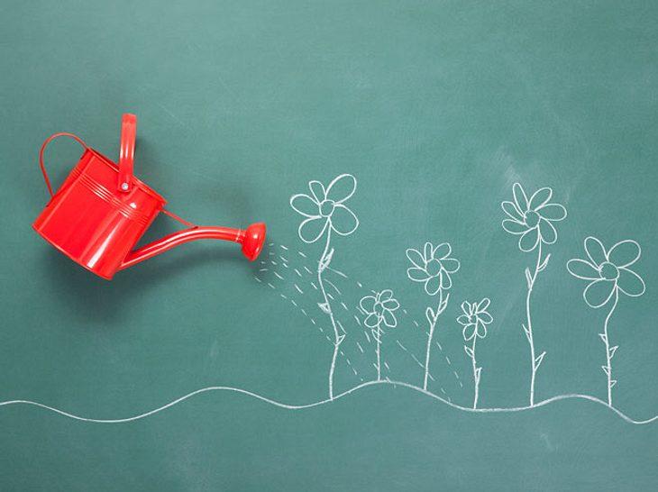 Was Sie beachten sollten, wenn Sie Ihre Blumen in der Urlaubszeit nicht selbst gießen können.