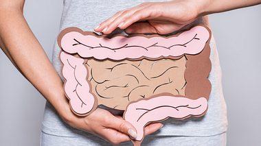 Darmkur: Ab wann es sich lohnt den Darm aufzubauen