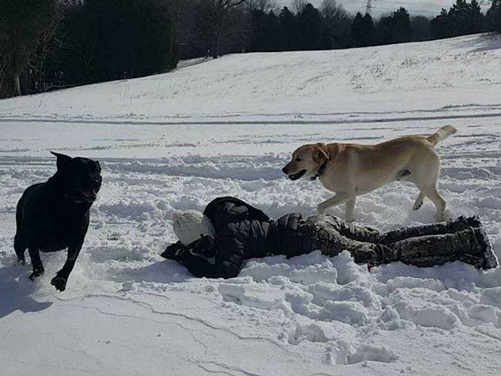Dew und Lily spielen im Schnee.
