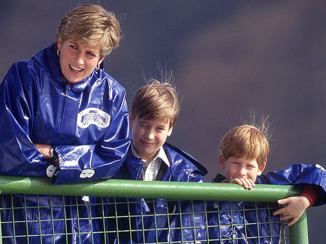 Prinz Harry & Prinz William: So war Diana als Mutter