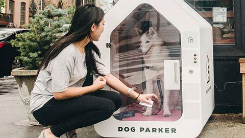 Dog Parker: Hunde-Parkhäuser machen den Einkauf mit Vierbeiner leichter - Foto: Dog Parker