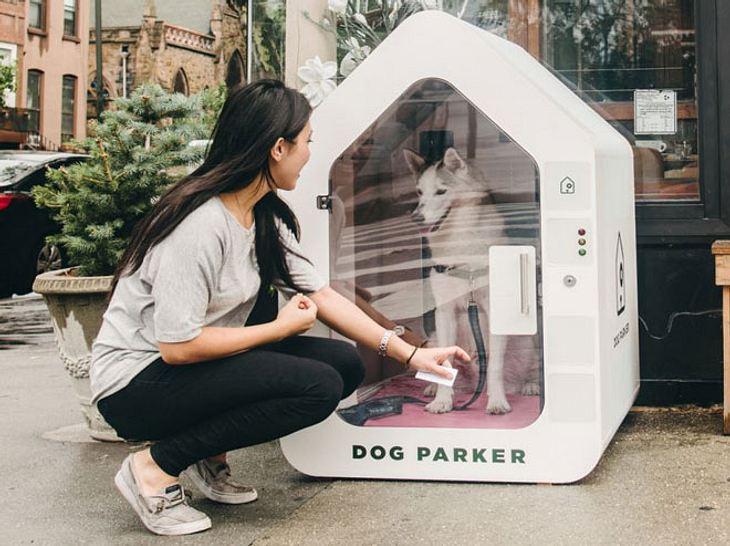 Dog Parker: Hunde-Parkhäuser machen den Einkauf mit Vierbeiner leichter