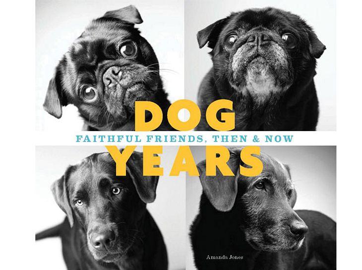 Dog Years: So sieht der Bildband aus