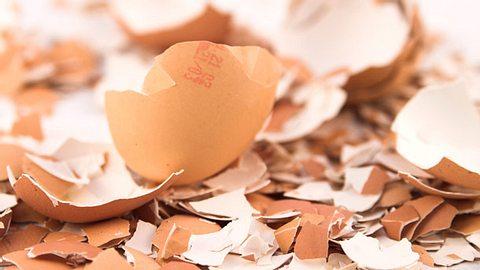 Eierschale als Hausmittel