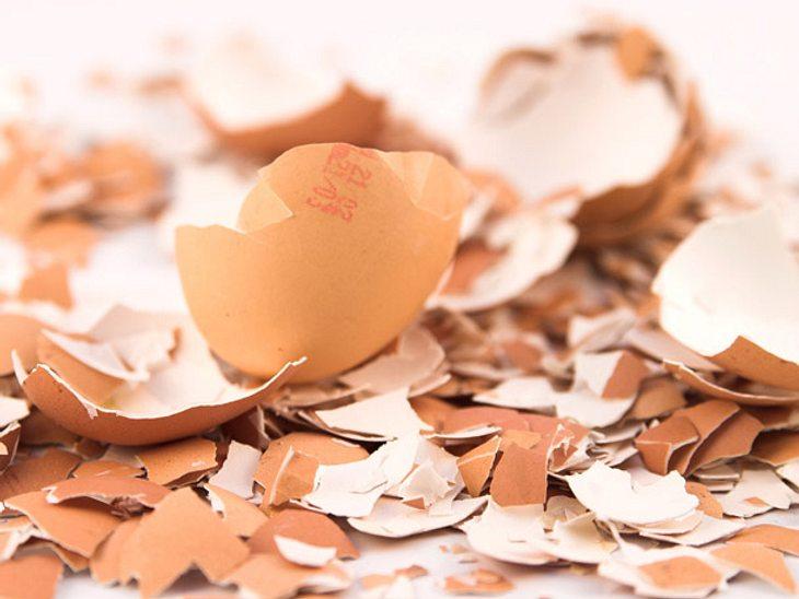 Eierschalen als Beautyhelfer & Co