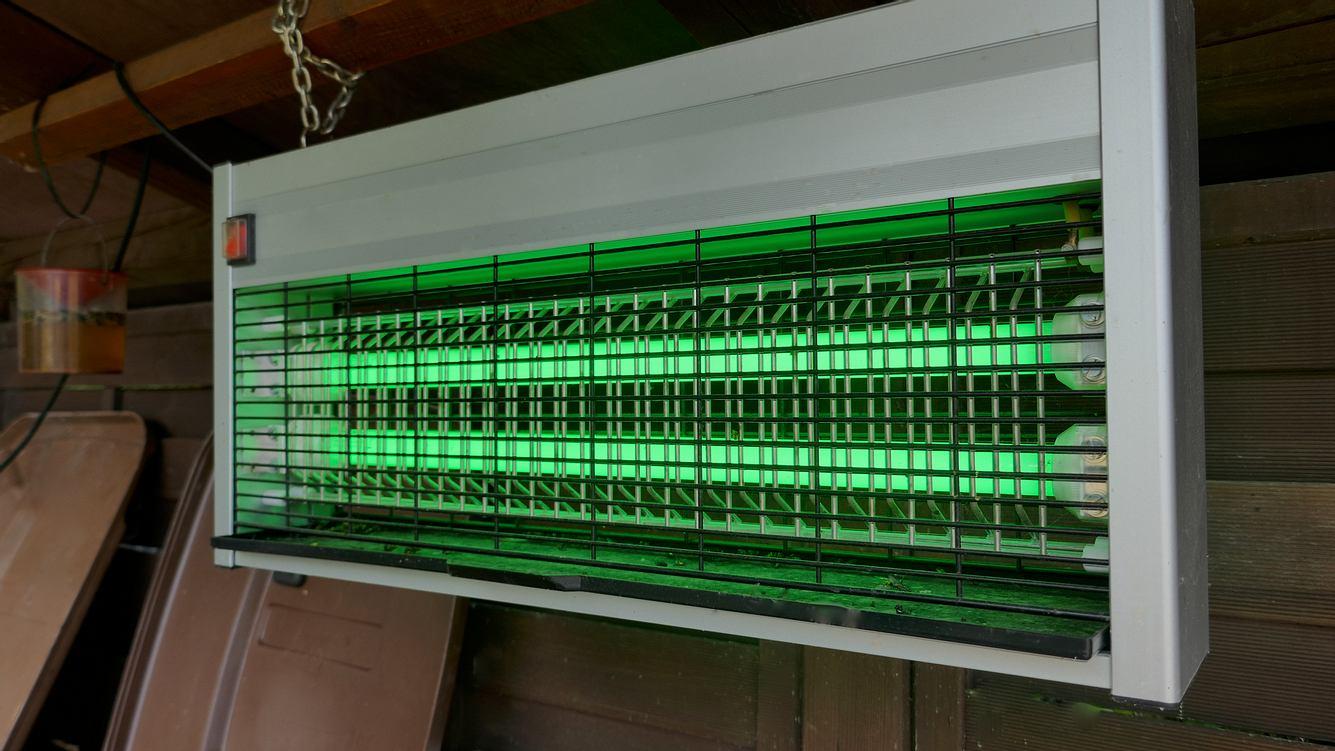 Elektrischer Insektenvernichter hängt in einem Raum.