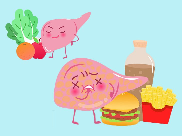 Fettleber Ursachen