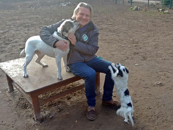 Frank Weber von hundkatzemaus mit seinen Hunden.