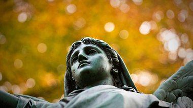Friedhof Ohlsdorf denkt über Gebühr nach - Foto: Fitzer/iStock