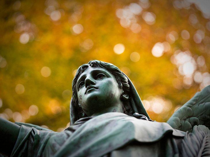 Friedhof Ohlsdorf denkt über Gebühr nach