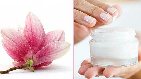 Schöne Haut dank Magnolien