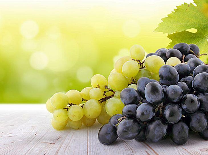 Weintrauben sind wahre Anti-Aging-Spezialisten für Ihre Haut.