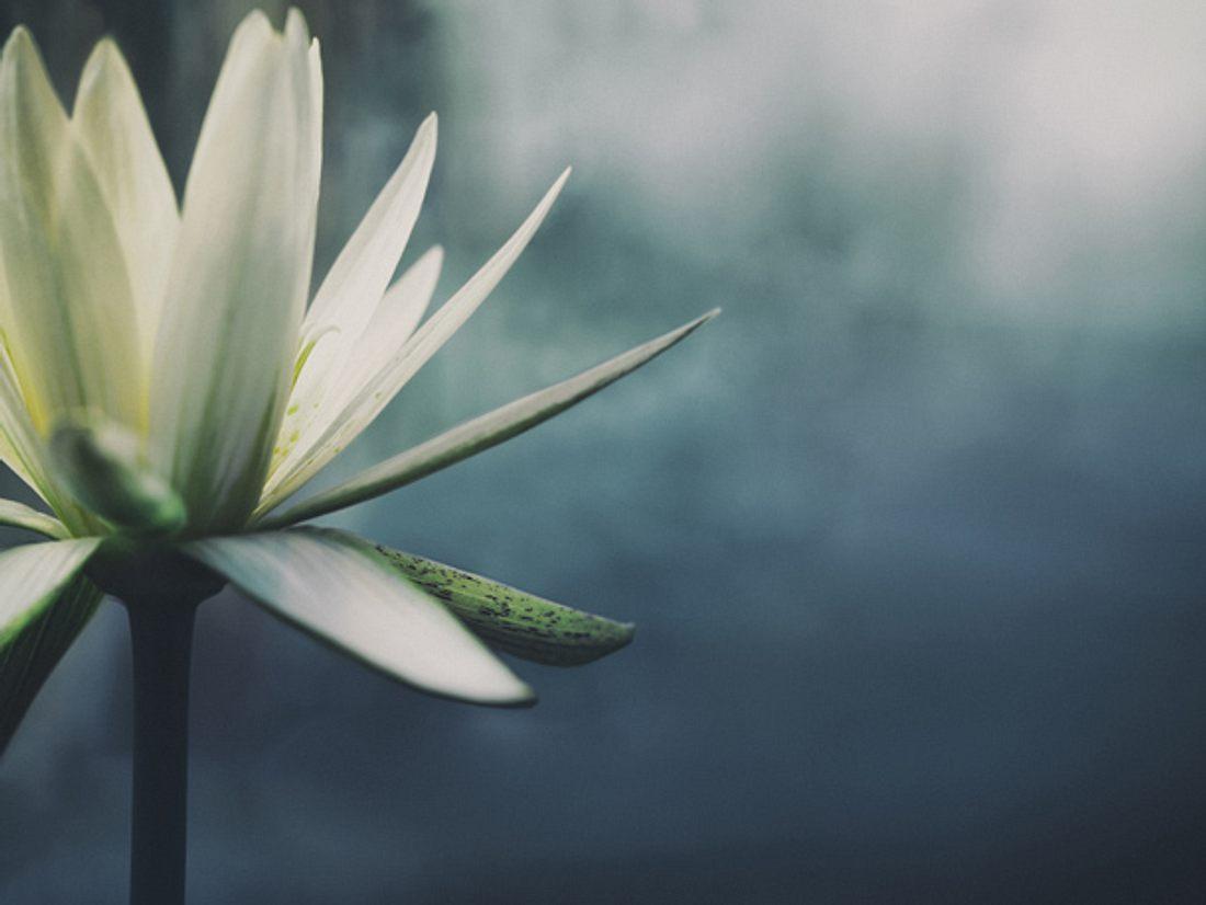 Meditation für Anfänger leicht erklärt.