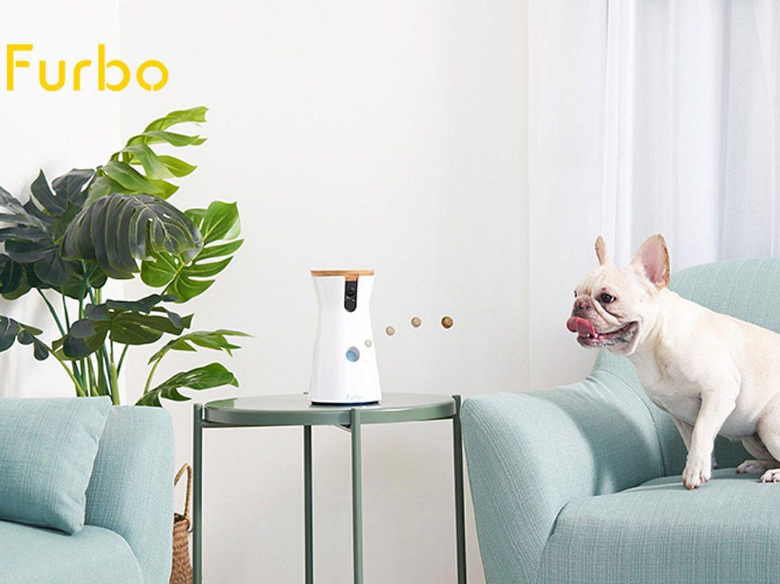Gewinne eine Furbo Hundekamera