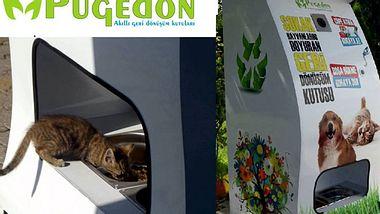 Saubere Straßen und Futter für Streuner mithilfe von Flaschenautomaten - Foto: Pugedon