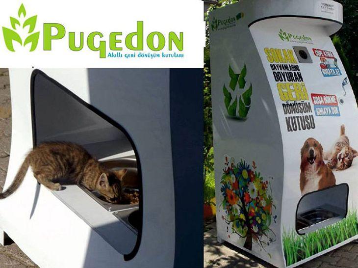 Saubere Straßen und Futter für Streuner mithilfe von Flaschenautomaten