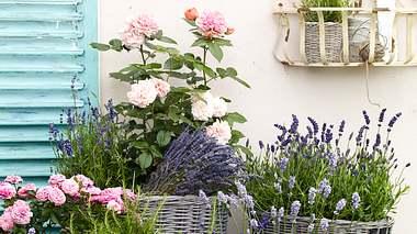 Garten dekorieren. - Foto: HBV Interior