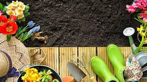 Unser Gartenkalender verrät, wie Sie Ihre grüne Oase richtig pflegen. - Foto: AlexRaths/iStock