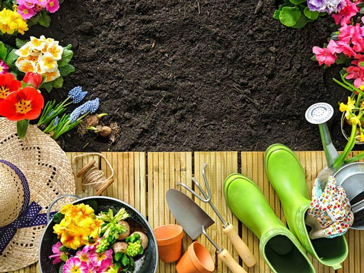 Garten-Planer für den Frühling