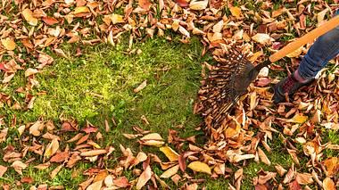 Wie Sie Ihren Garten winterfest machen.  - Foto: Nikada / iStock