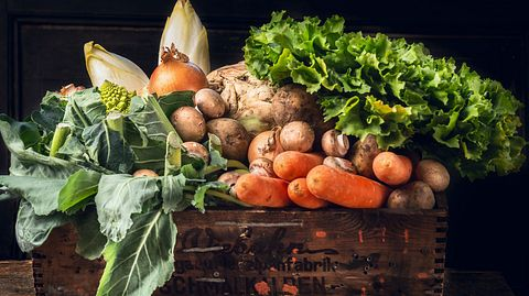 Gemüse lange lagern