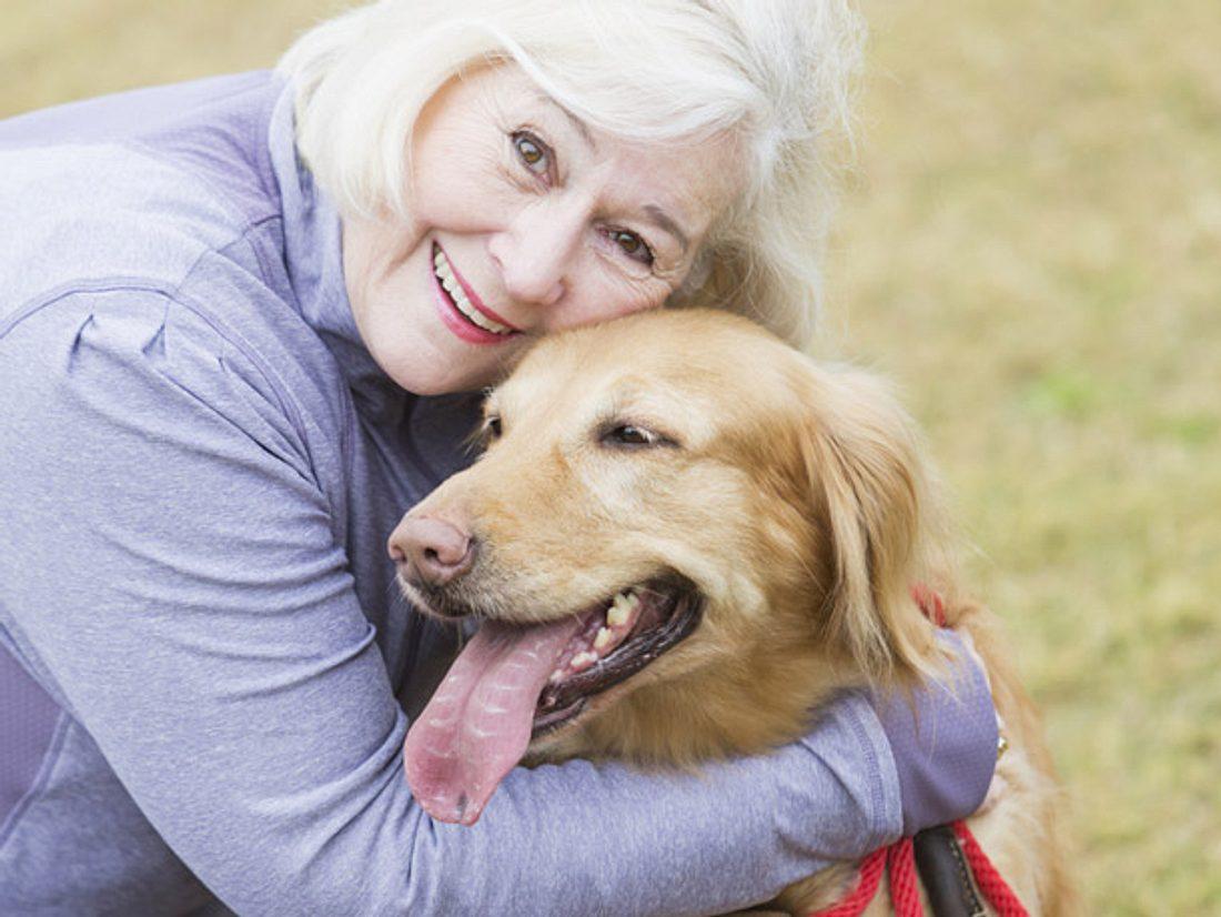Hunde halten ihre Besitzer gesund, weil die Bewegung für mehr Fitness sorgt.