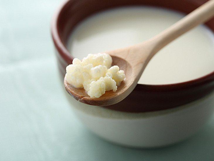 Um Kefir selber zu machen, müssen Sie dieses Milchgetränk mit einem Kefirpilz ansetzen und gären lassen.