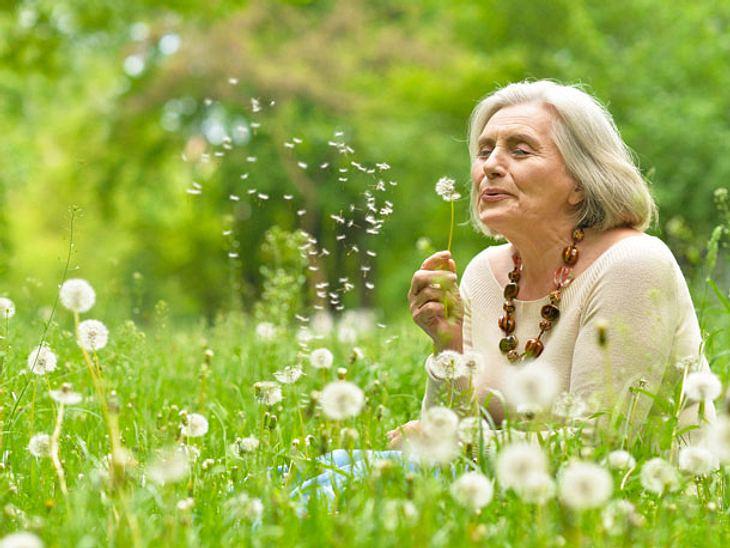 Gehirntraining: Konzentration verbessern mit Hilfe der Pusteblume