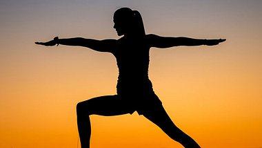 Der Yoga-Krieger