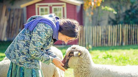 Auf dem Gnadenhof L(i)ebenswert finden Tiere in Not ein neues Zuhause. - Foto: Sonja Gelb Fotografie