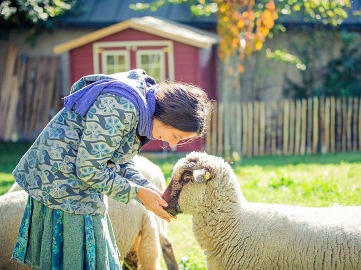 Auf dem Gnadenhof L(i)ebenswert finden Tiere in Not ein neues Zuhause.