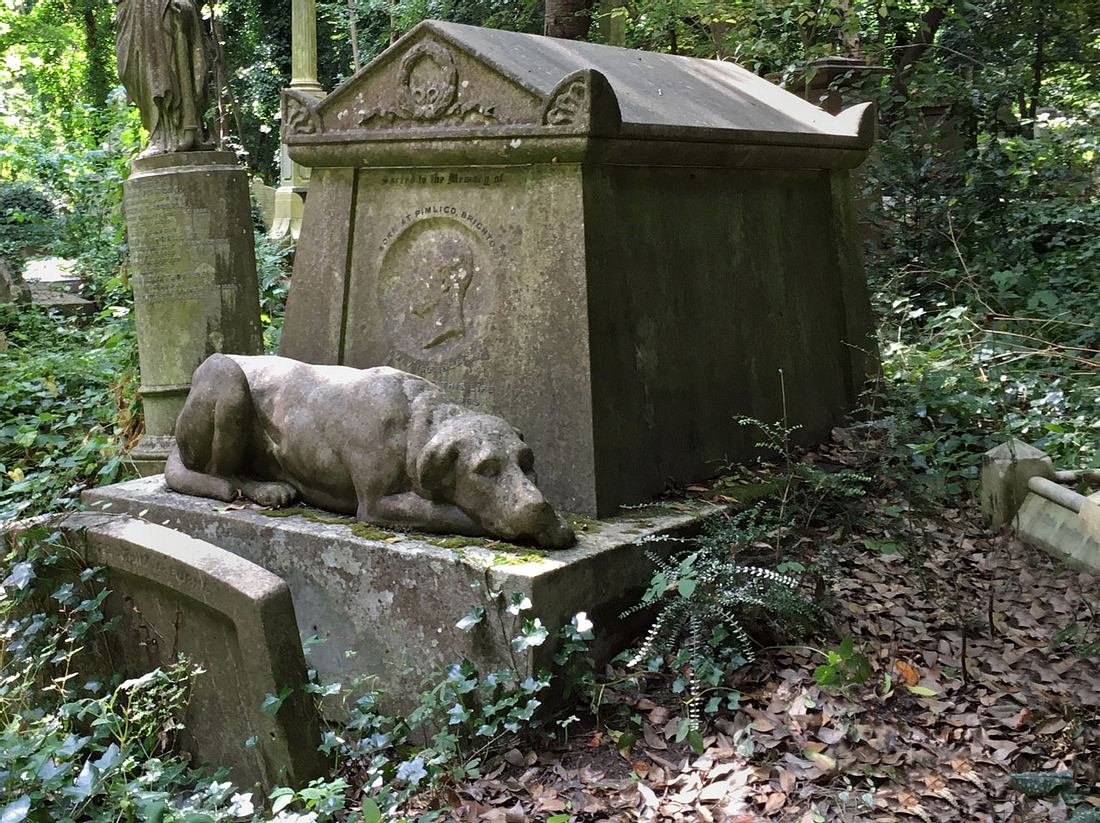 Ein Hamburger Friedhof plant gemeinsame Gräber für Menschen und Tiere.