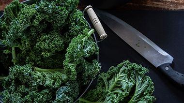 Grünkohl richtig zubereiten