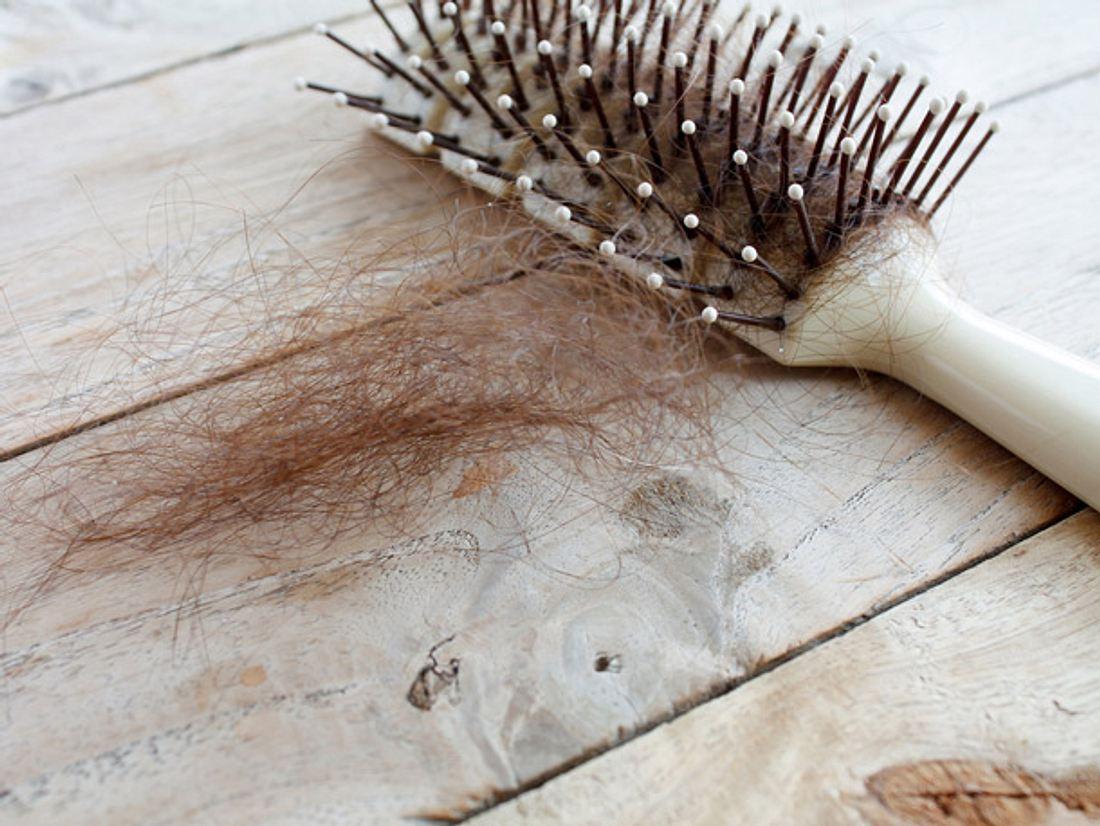 Haarausfall bei Frauen vorbeugen: Gesundes Haar und mehr Volumen