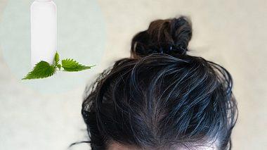 Das richtige Haarwasser kann Kopfhaut-Probleme zuverlässig bekämpfen - Foto: eskymaks / Softulka / iStock