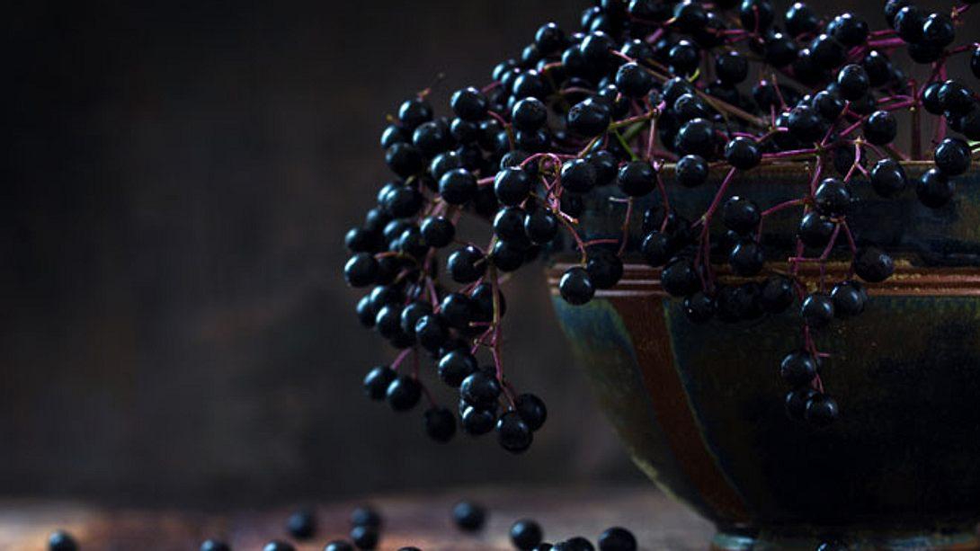 Heißer Holunder: Dieses Rezept stärkt Ihr Immunsystem