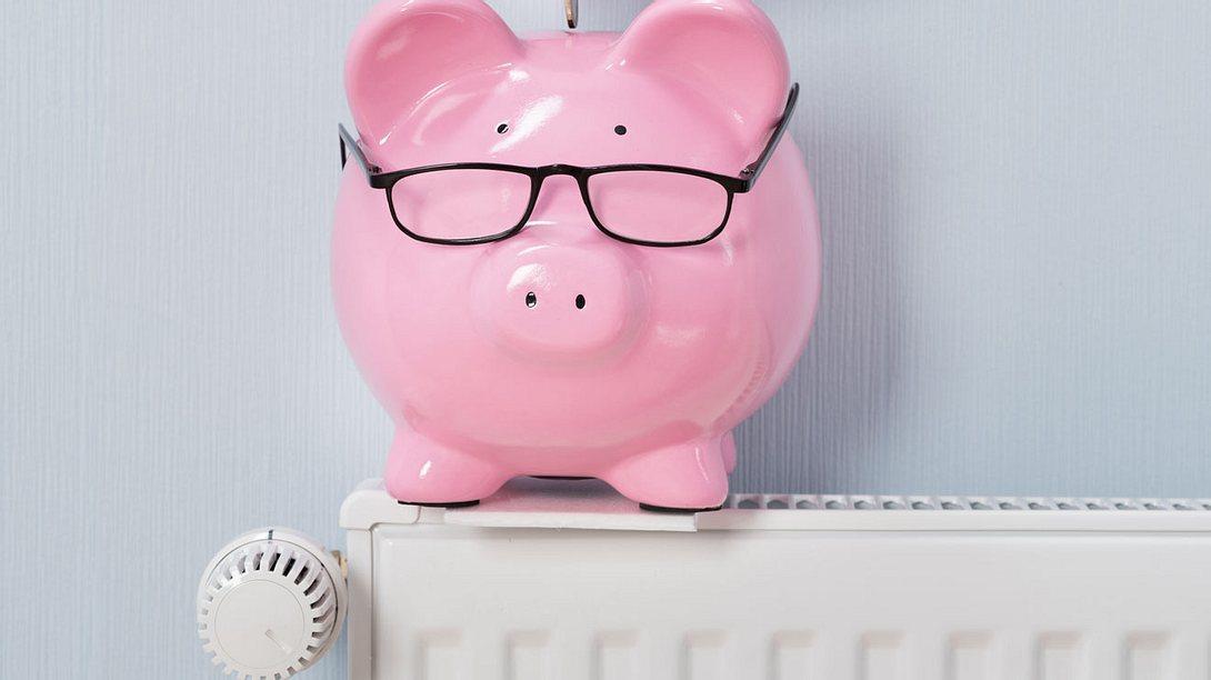 Mit diesen Tipps sparen Sie viel Geld - Foto: AndreyPopov / iStock