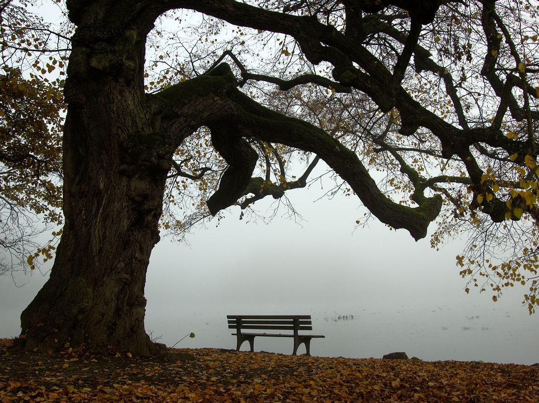 Herbstdepression: Was der Seele jetzt guttut