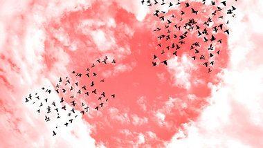 So eng hängen Herz und Seele zusammen